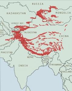 Snow leopard range countries. Map Snow Leopard Conservancy