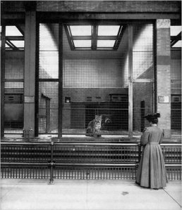 Bronx Zoo 1906. WCS Photo.