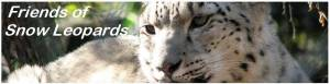 "Anyone can join the Melbourne Zoo ""Friends of Snow Leopards network"""