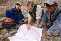 Tom McCarthy and his team studying the map of snow leopard tracks in Mongolia. Photo Nic Bishop.